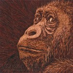 "Specialty Items""Gorilla""